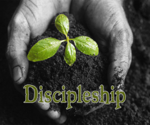 The 21st Century Cost of Discipleship
